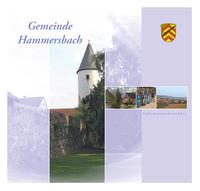Bürger-Infomationsbroschüre der Gemeinde Hammersbach