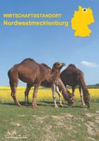 Wirtschaftstandort Nordwestmecklenburg