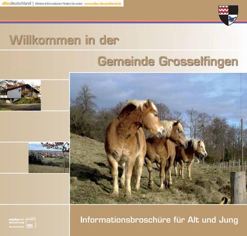 Bürgerinformationsbroschüre der Gemeinde Grosselfingen