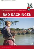 Bad Säckingen leben, wohnen und arbeiten in der Trompeterstadt
