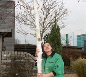 Interview: Lene Duggen (24) über die Ausbildung zur Gärtnerin, Fachrichtung Garten- und Landschaftsb