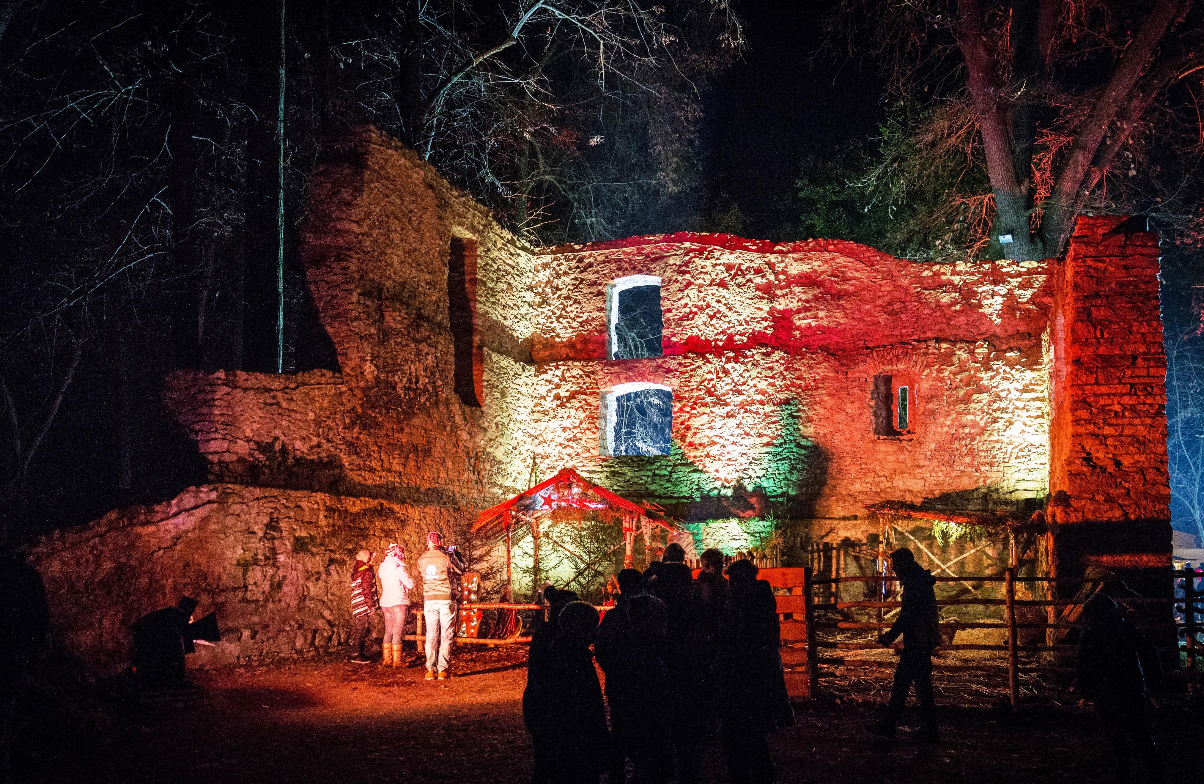 Weihnachtsromantik: Den Stadtpark im traumhaften Ambiente erleben