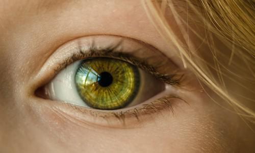 Die Woche des Sehens