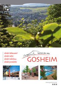 Gemeinde Gosheim Bürgerinformationsbroschüre (Auflag 12)