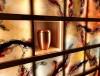 <span style='padding-top:10px;padding-bottom:10px;display:inline-block'>Urne im Glaskunstkolumbarium</span>