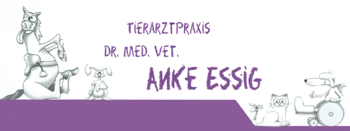 Dr. Anke Essig