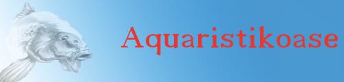 Aquaristikoase