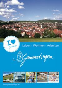 Leben, wohnen und arbeiten in der Stadt Gammertingen (Auflage 8)
